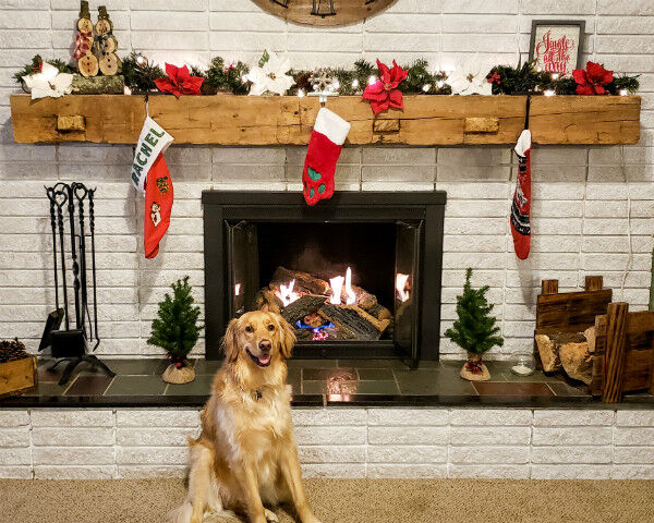 Rustic Hearth with Dog