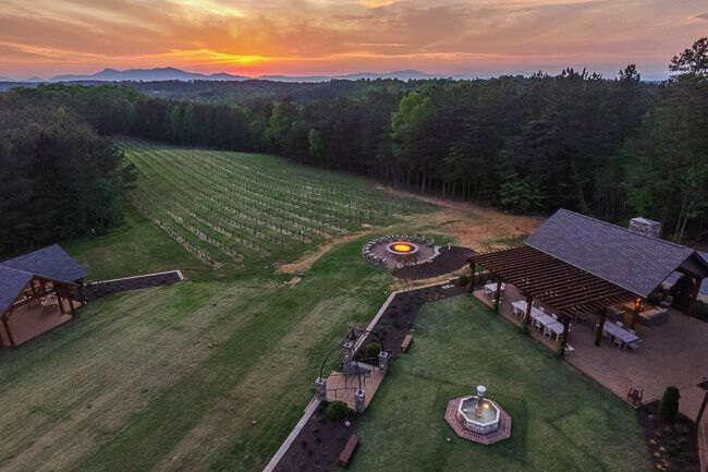 Aerial shot of a vineyard at sunset